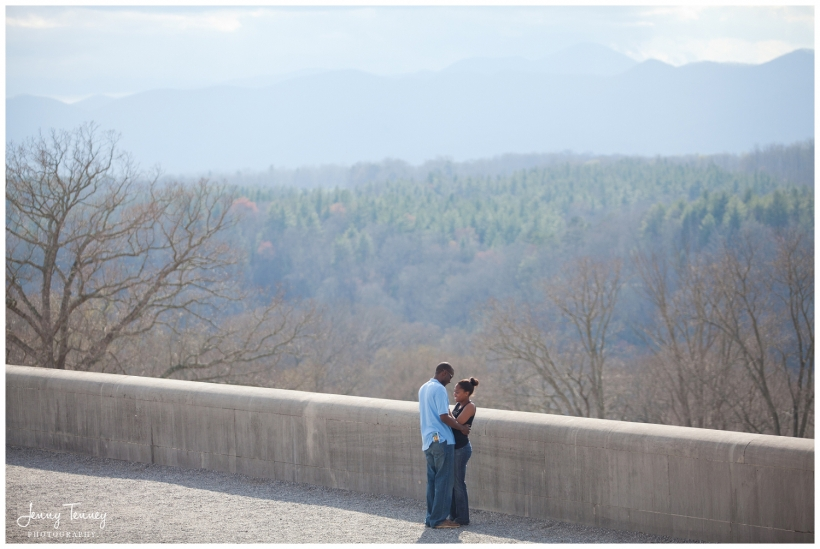 Biltmore Estate proposal