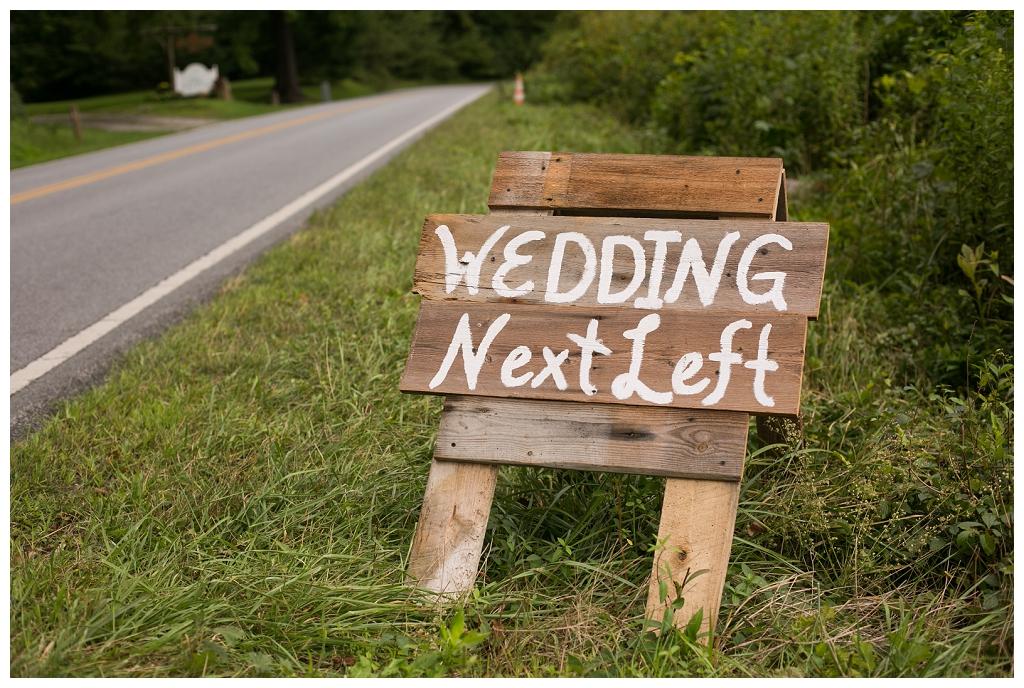 Brevard wedding photos