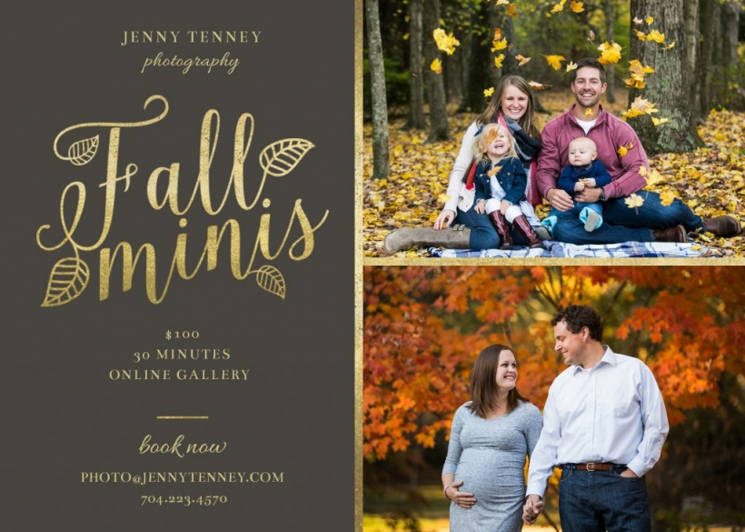 Salisbury NC fall mini sessions